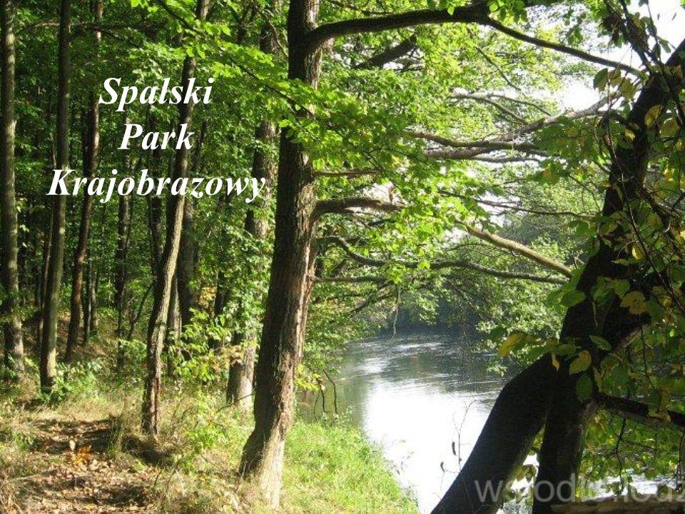 Spalski Park Krajobrazowy