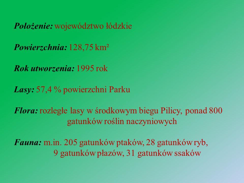 Położenie: województwo łódzkie Powierzchnia: 128,75 km² Rok utworzenia: 1995 rok Lasy: 57,4 % powierzchni Parku Flora: rozległe lasy w środkowym biegu Pilicy, ponad 800 gatunków roślin naczyniowych Fauna: m.in.
