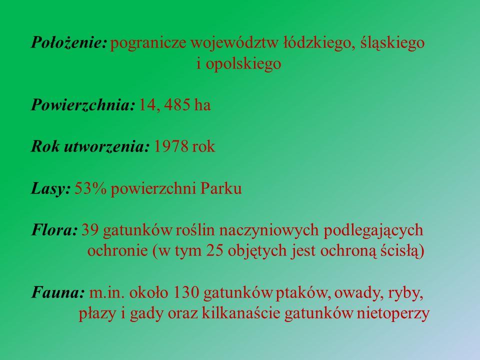 Położenie: pogranicze województw łódzkiego, śląskiego i opolskiego Powierzchnia: 14, 485 ha Rok utworzenia: 1978 rok Lasy: 53% powierzchni Parku Flora: 39 gatunków roślin naczyniowych podlegających ochronie (w tym 25 objętych jest ochroną ścisłą) Fauna: m.in.