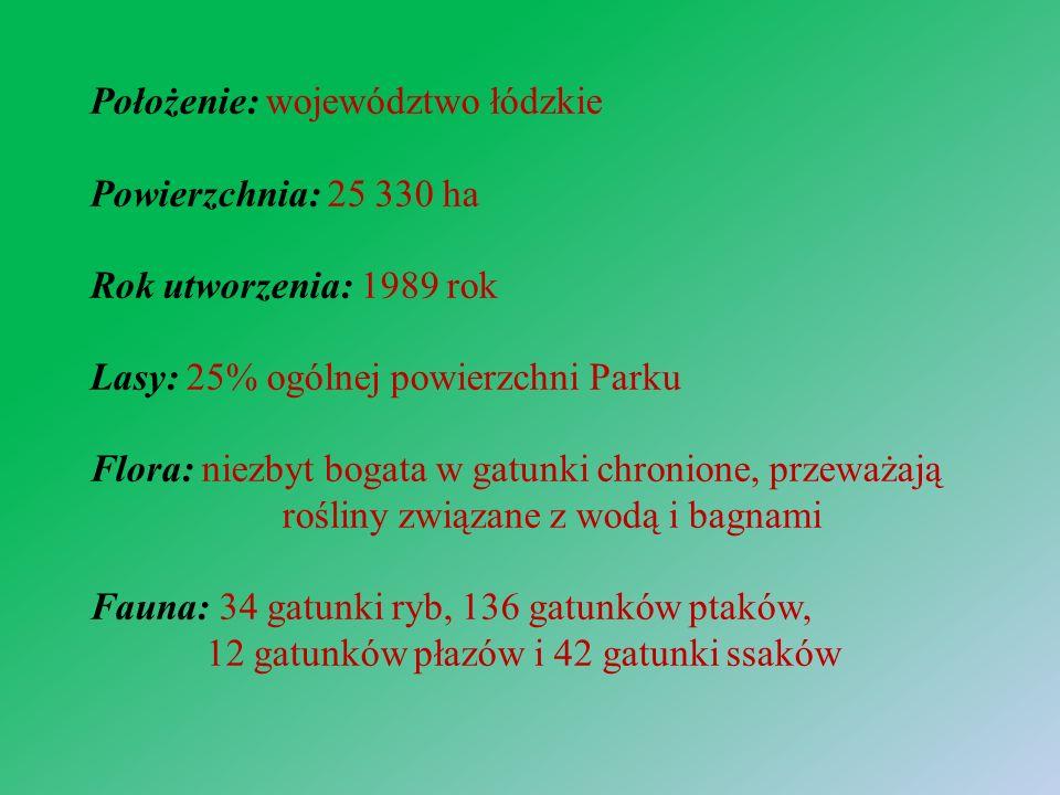 Źródła: https://pl.wikipedia.org/wiki/Bolimowski_Park_Krajobrazowy https://pl.wikipedia.org/wiki/Park_Krajobrazowy_Wzniesie%C5%84_%C5%81%C3%B3dz kich https://pkwl.parkilodzkie.pl/ https://pl.wikivoyage.org/wiki/Park_Krajobrazowy_Mi%C4%99dzyrzecza _Warty_i_Widawki https://pl.wikipedia.org/wiki/Przedborski_Park_Krajobrazowy#Kompleksy_le.C5.9Bne https://pl.wikipedia.org/wiki/Spalski_Park_Krajobrazowy http://lodzkie.travel/?kat=ochrona_przyrody&sub=1&id=6 http://lodzkie.travel/?kat=ochrona_przyrody&sub=1&id=7 https://pl.wikipedia.org/wiki/Za%C5%82%C4%99cza%C5%84ski_Park_Krajobrazowy# Flora