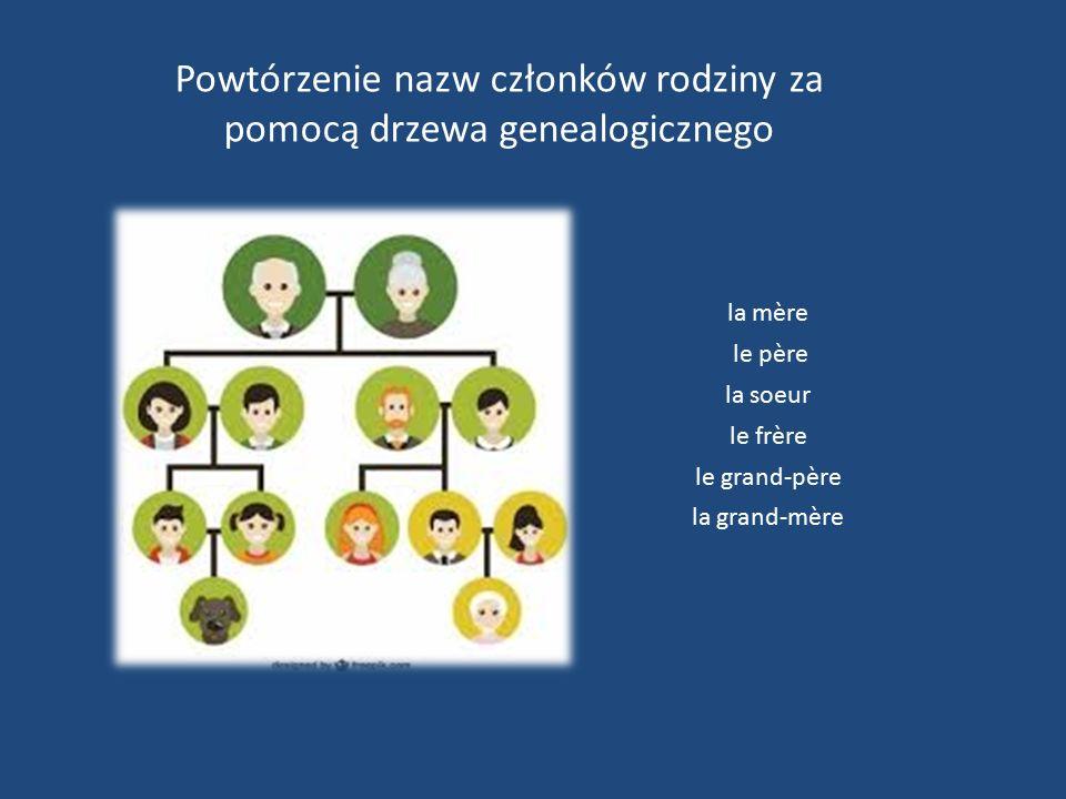 Powtórzenie nazw członków rodziny za pomocą drzewa genealogicznego la mère le père la soeur le frère le grand-père la grand-mère