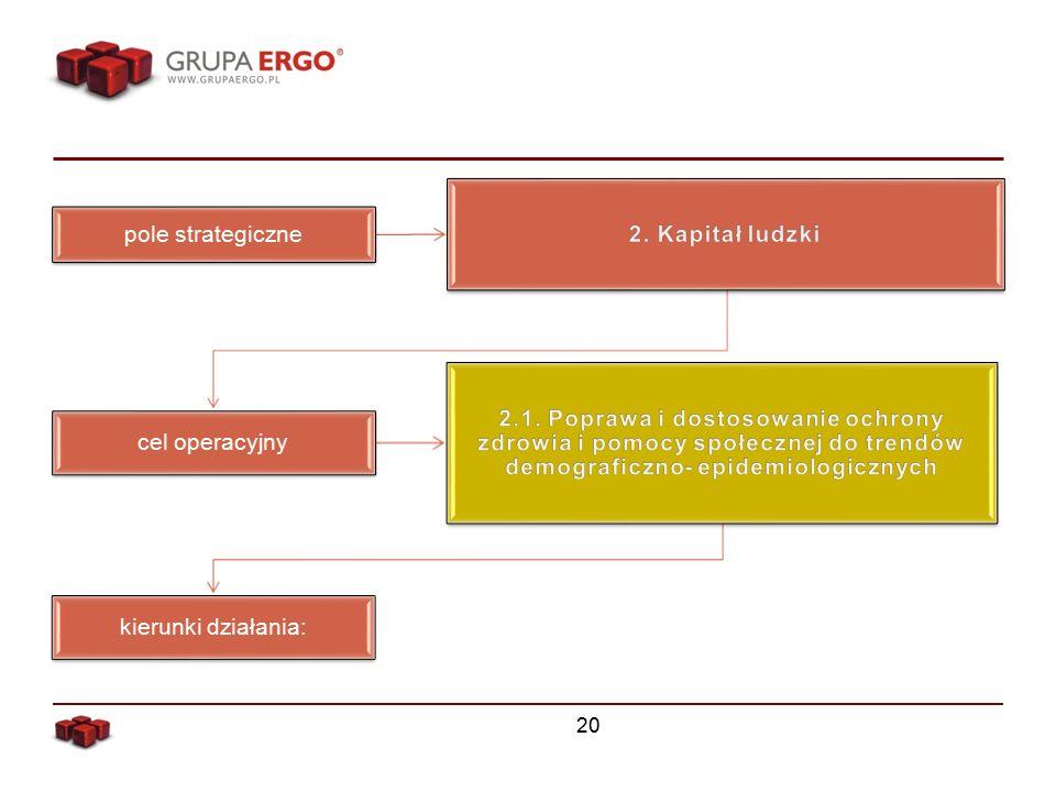 20 pole strategiczne cel operacyjny kierunki działania: