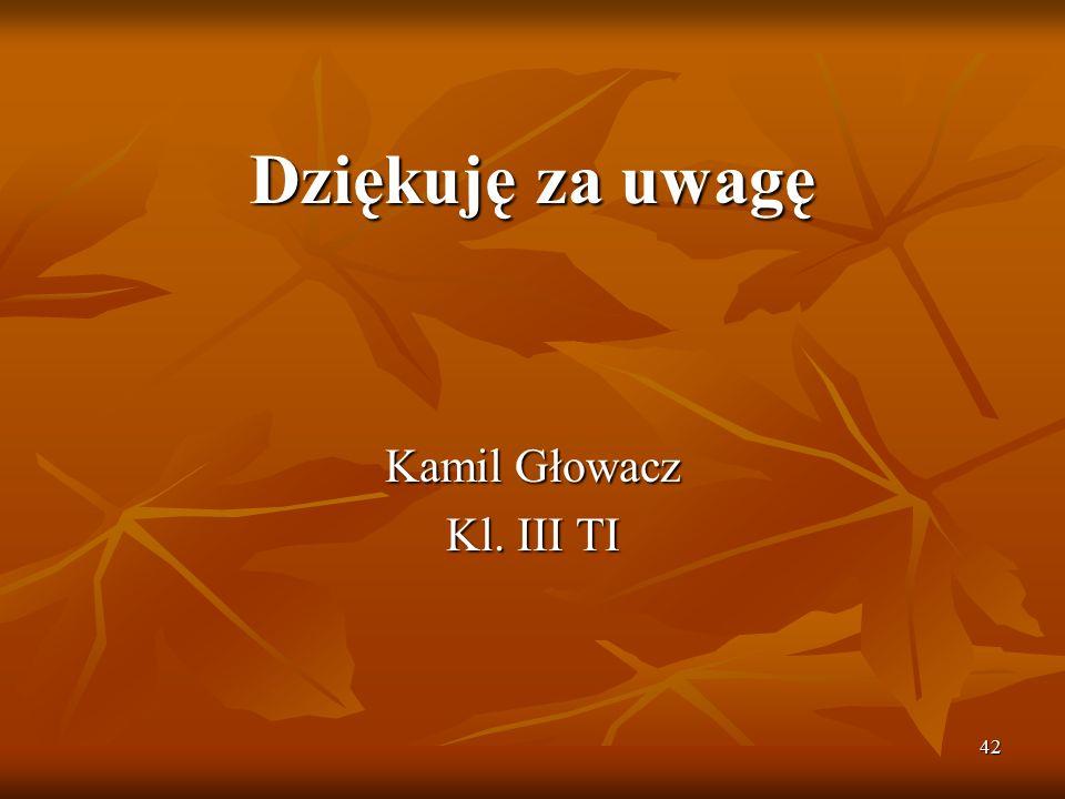 42 Dziękuję za uwagę Kamil Głowacz Kl. III TI