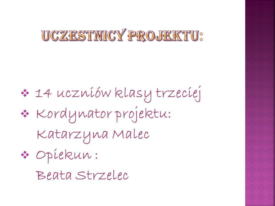  14 uczniów klasy trzeciej  Kordynator projektu: Katarzyna Malec  Opiekun : Beata Strzelec
