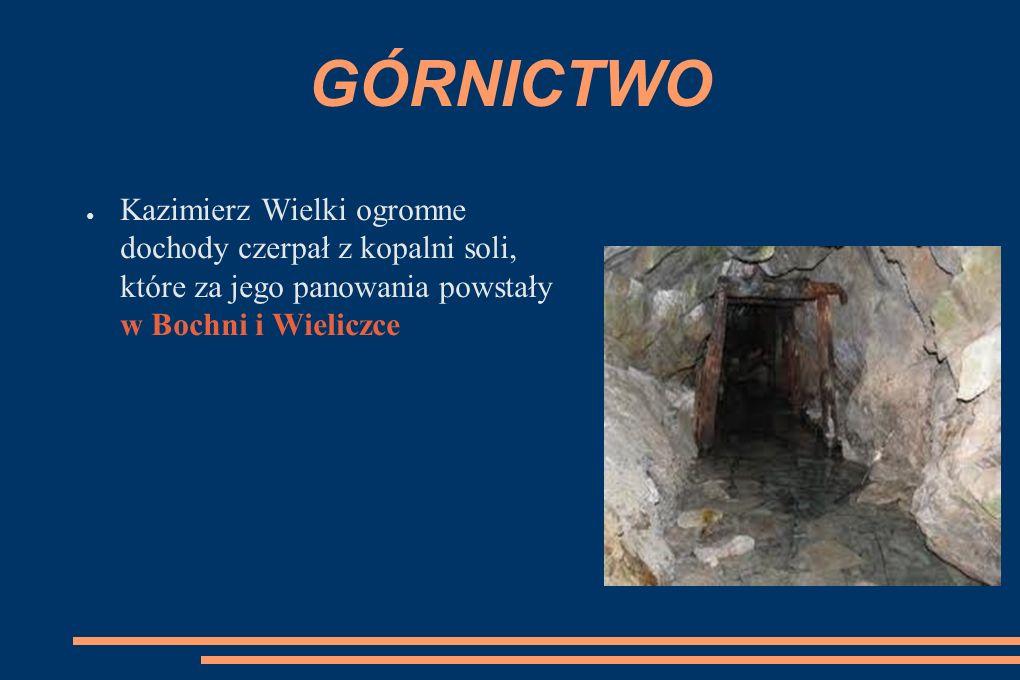 GÓRNICTWO ● Kazimierz Wielki ogromne dochody czerpał z kopalni soli, które za jego panowania powstały w Bochni i Wieliczce