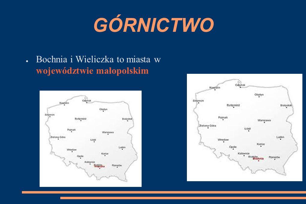 GÓRNICTWO ● Bochnia i Wieliczka to miasta w województwie małopolskim