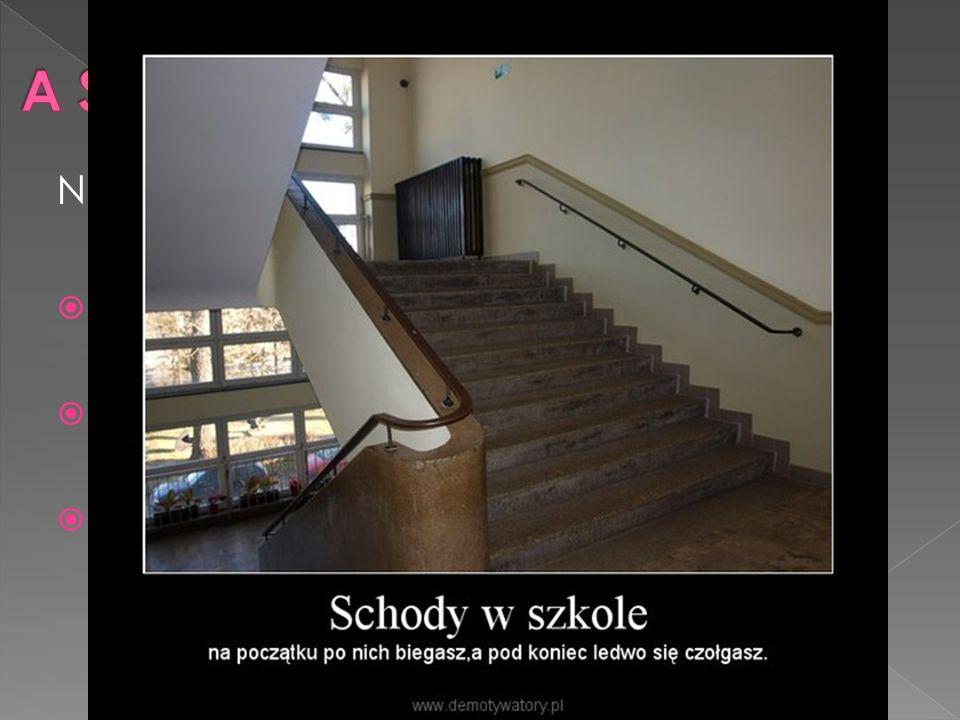 Niektórzy ciekawscy uczniowie wiedzą że:  Łącznie pokonujemy aż 69 schodów z dworu do piętra gimnazjalnego  Schody w budynku(64)+(5)schody z zewnętrznej części budynku  Inaczej mówiąc pokonujemy 31m wchodząc na nasze piętro