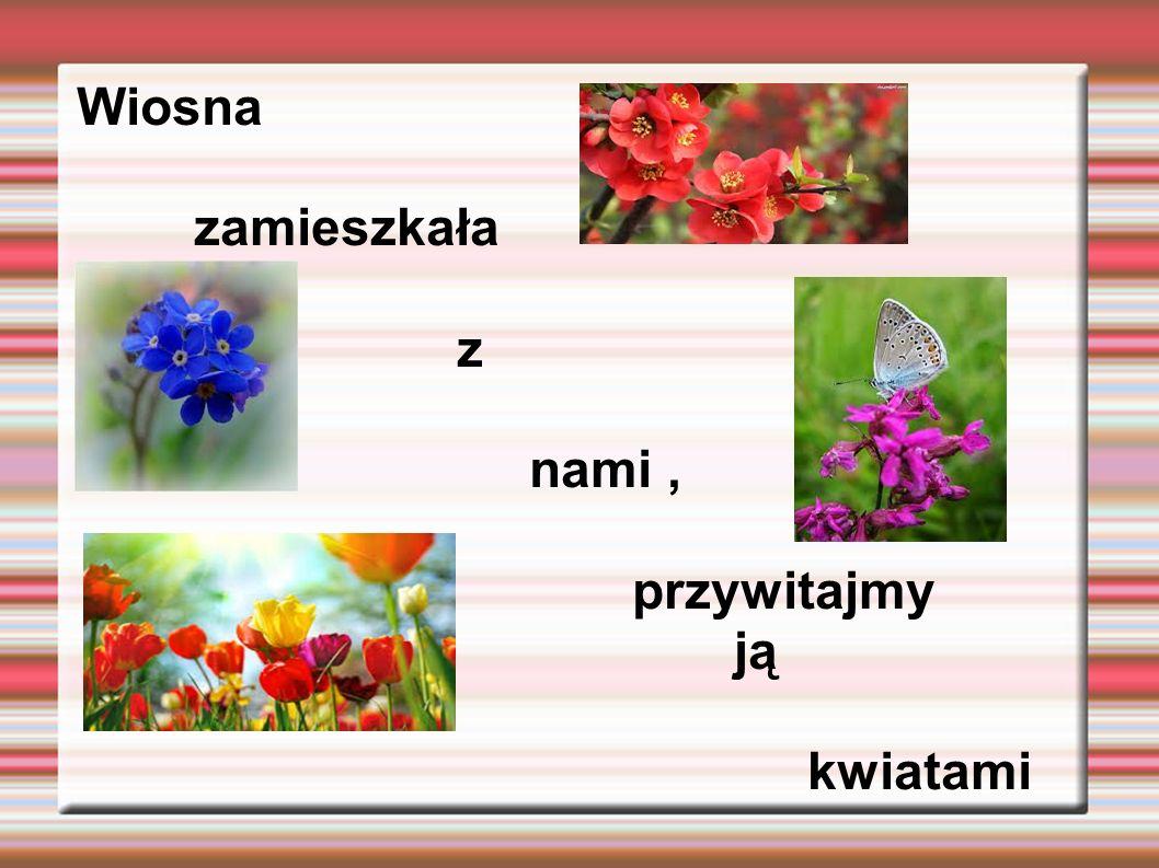 Wiosna zamieszkała z nami, przywitajmy jąją ją kwiatami