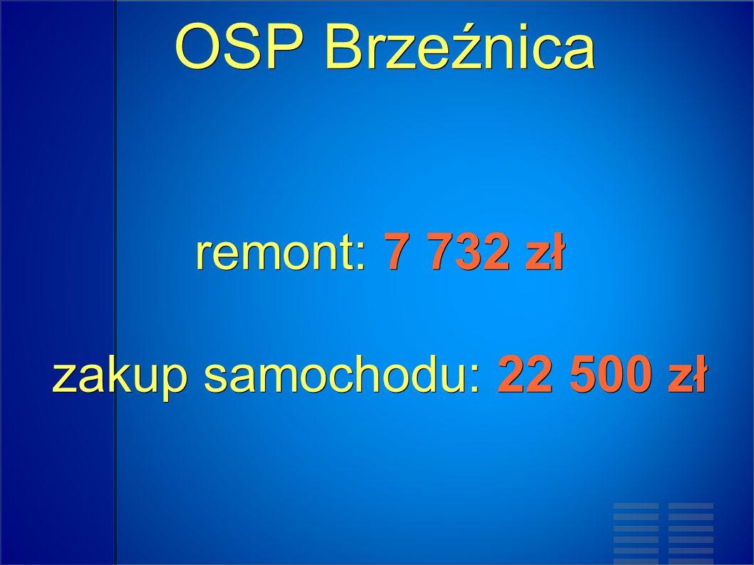 OSP Brzeźnica remont: 7 732 zł zakup samochodu: 22 500 zł OSP Brzeźnica remont: 7 732 zł zakup samochodu: 22 500 zł