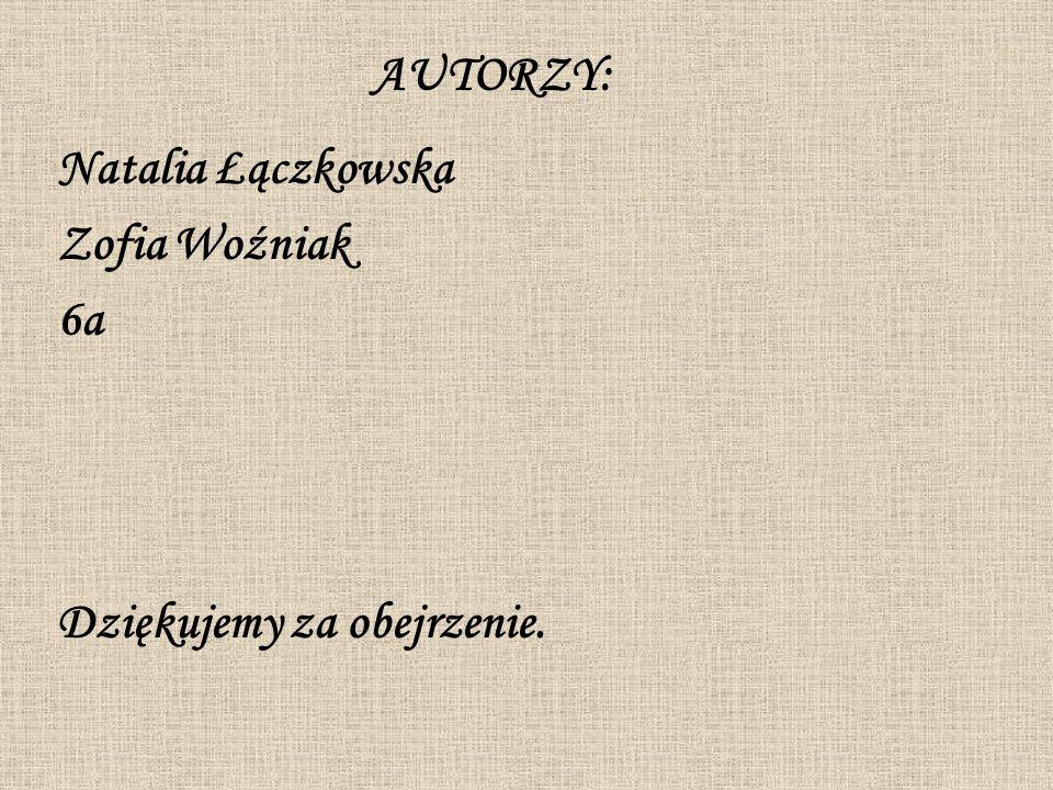 AUTORZY: Natalia Łączkowska Zofia Woźniak 6a Dziękujemy za obejrzenie.