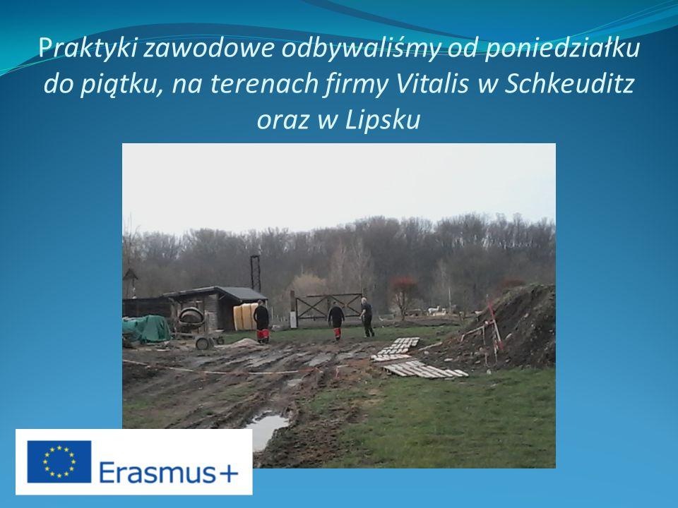 Praktyki zawodowe odbywaliśmy od poniedziałku do piątku, na terenach firmy Vitalis w Schkeuditz oraz w Lipsku