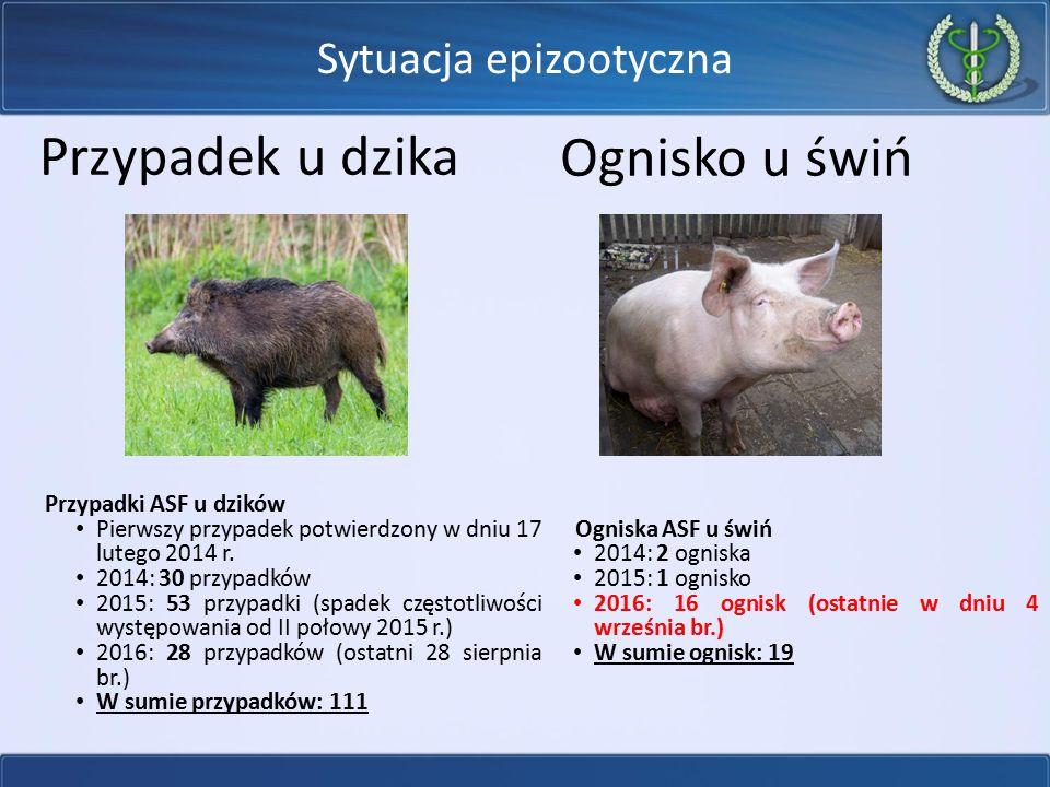 Sytuacja epizootyczna Od 2014 r.