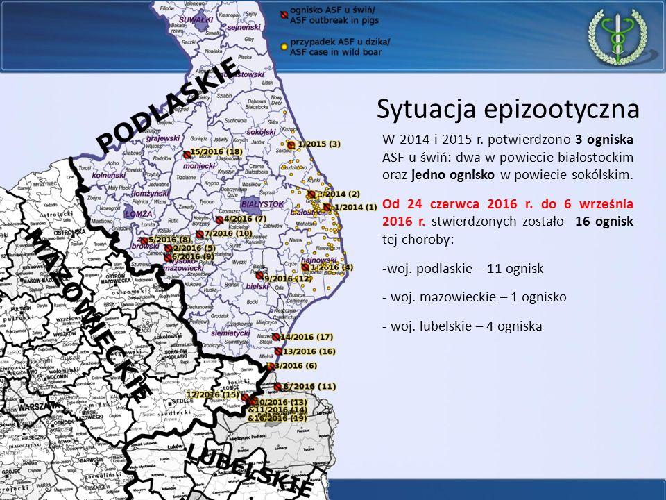 Sytuacja epizootyczna W 2014 i 2015 r. potwierdzono 3 ogniska ASF u świń: dwa w powiecie białostockim oraz jedno ognisko w powiecie sokólskim. Od 24 c
