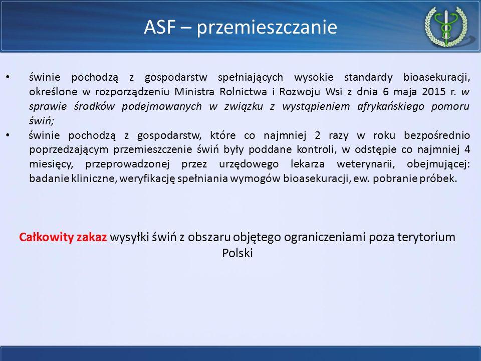 ASF – przemieszczanie świnie pochodzą z gospodarstw spełniających wysokie standardy bioasekuracji, określone w rozporządzeniu Ministra Rolnictwa i Roz
