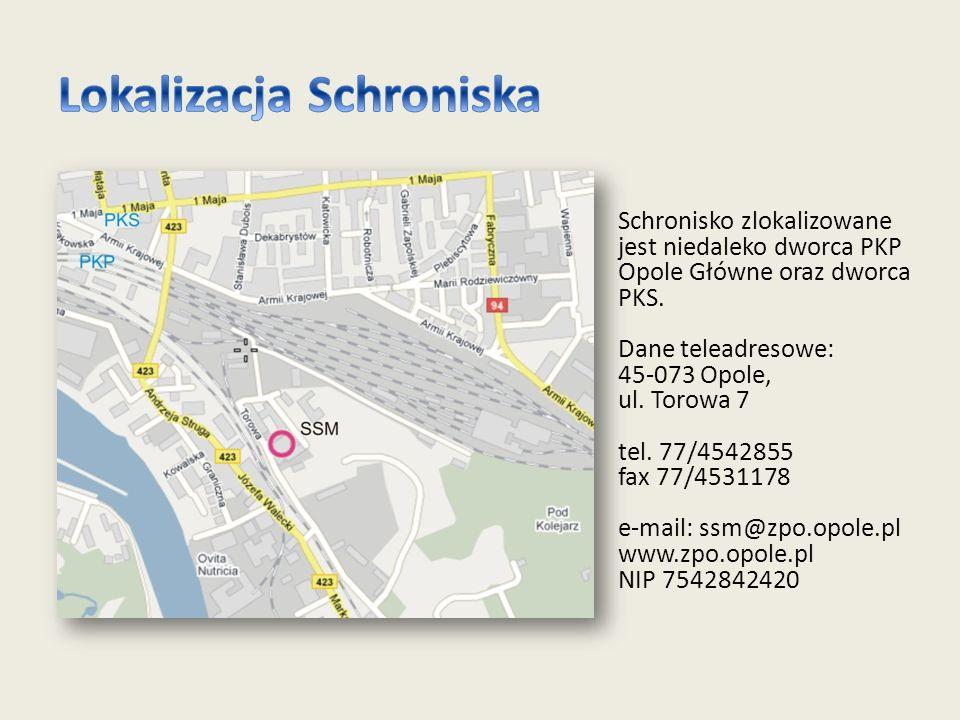 Schronisko zlokalizowane jest niedaleko dworca PKP Opole Główne oraz dworca PKS.