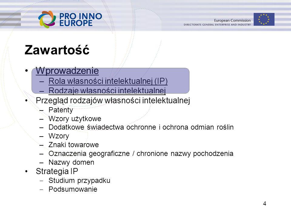 Wprowadzenie –Rola własności intelektualnej (IP) –Rodzaje własności intelektualnej Przegląd rodzajów własności intelektualnej –Patenty –Wzory użytkowe