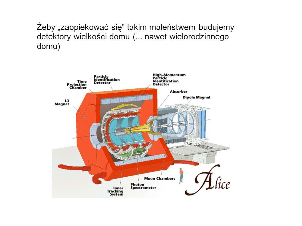 """Żeby """"zaopiekować się takim maleństwem budujemy detektory wielkości domu (..."""