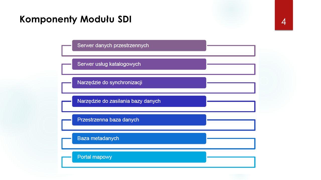 Komponenty Modułu SDI 4