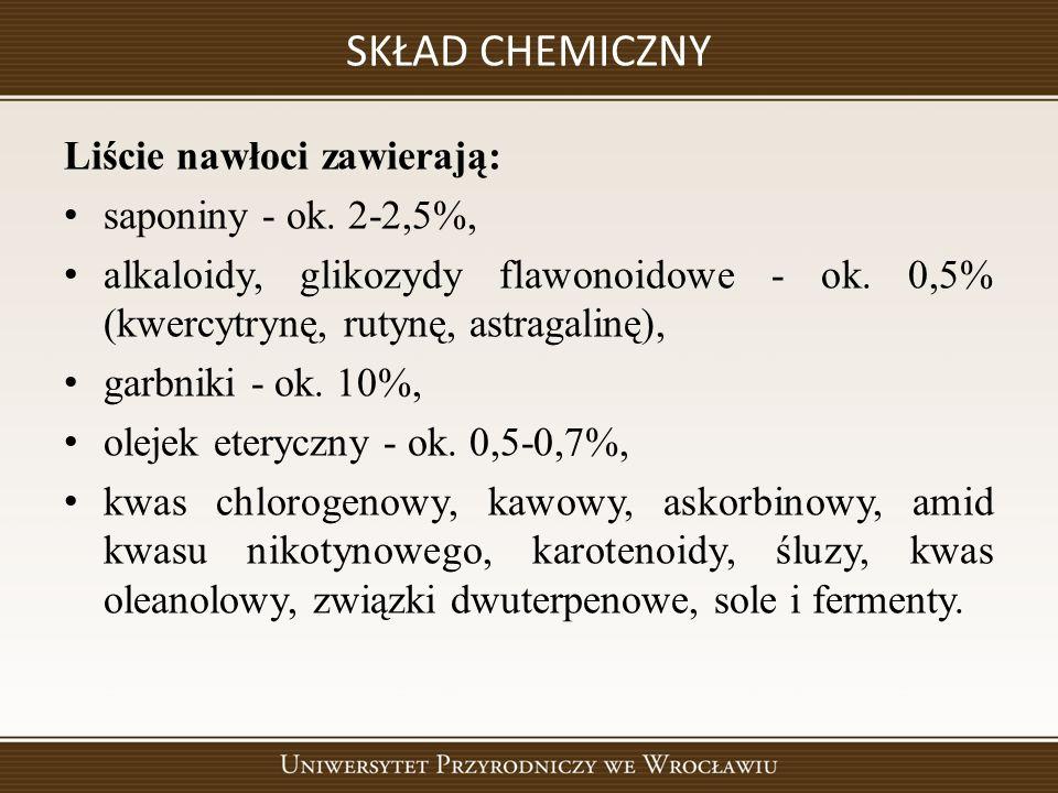SKŁAD CHEMICZNY Liście nawłoci zawierają: saponiny - ok.