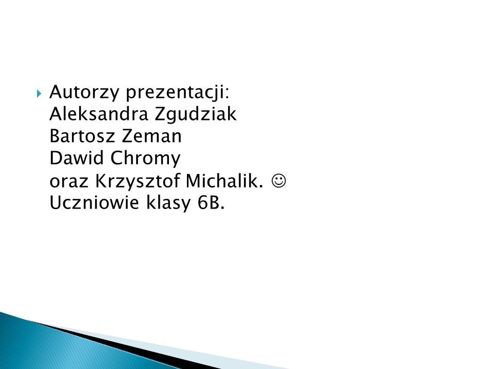  Autorzy prezentacji: Aleksandra Zgudziak Bartosz Zeman Dawid Chromy oraz Krzysztof Michalik.