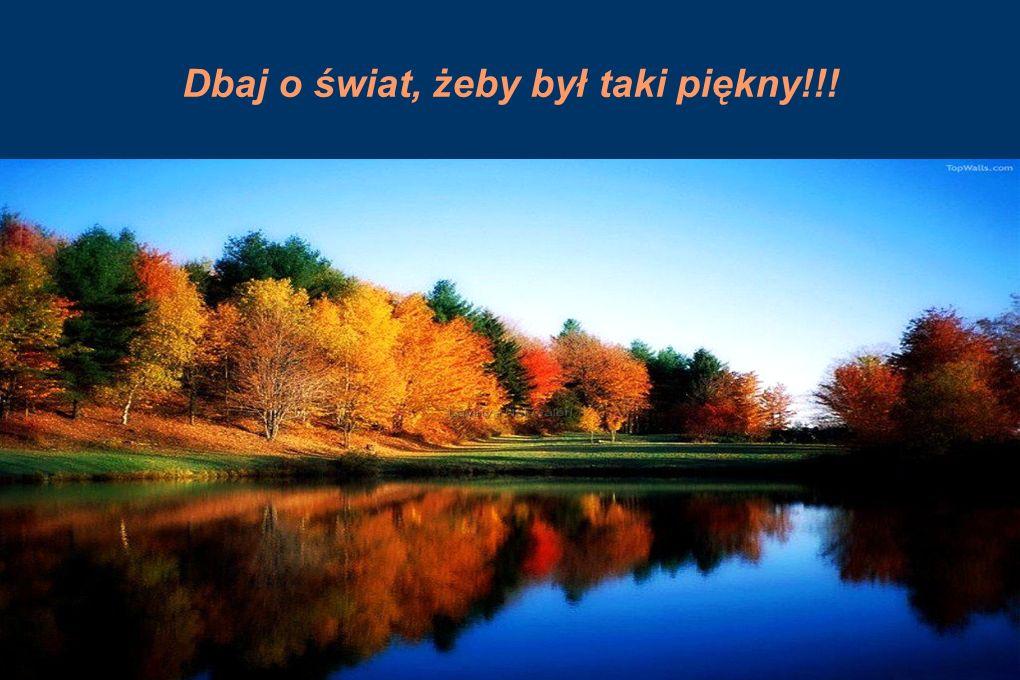 Dbaj o świat, żeby był taki piękny!!!