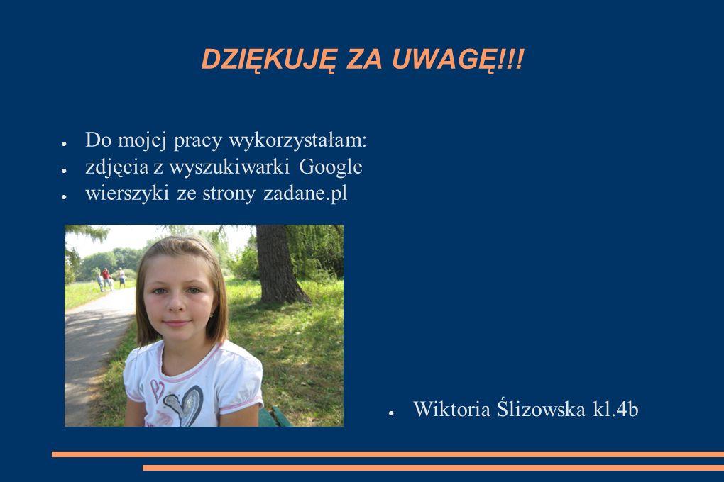 DZIĘKUJĘ ZA UWAGĘ!!! ● Do mojej pracy wykorzystałam: ● zdjęcia z wyszukiwarki Google ● wierszyki ze strony zadane.pl ● Wiktoria Ślizowska kl.4b