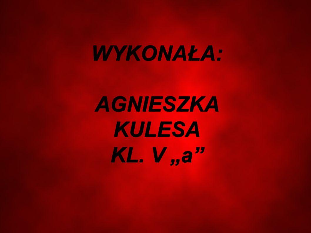 """WYKONAŁA: AGNIESZKA KULESA KL. V """"a"""