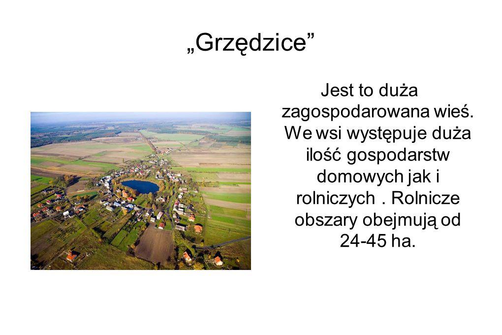 """""""Grzędzice Jest to duża zagospodarowana wieś."""