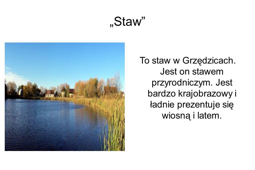 """""""Stara i Nowa Szkoła"""