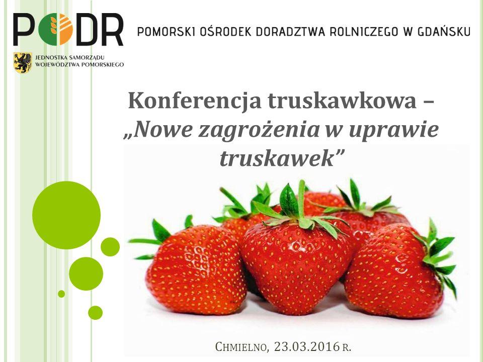 """Konferencja truskawkowa – """"Nowe zagrożenia w uprawie truskawek C HMIELNO, 23.03.2016 R."""