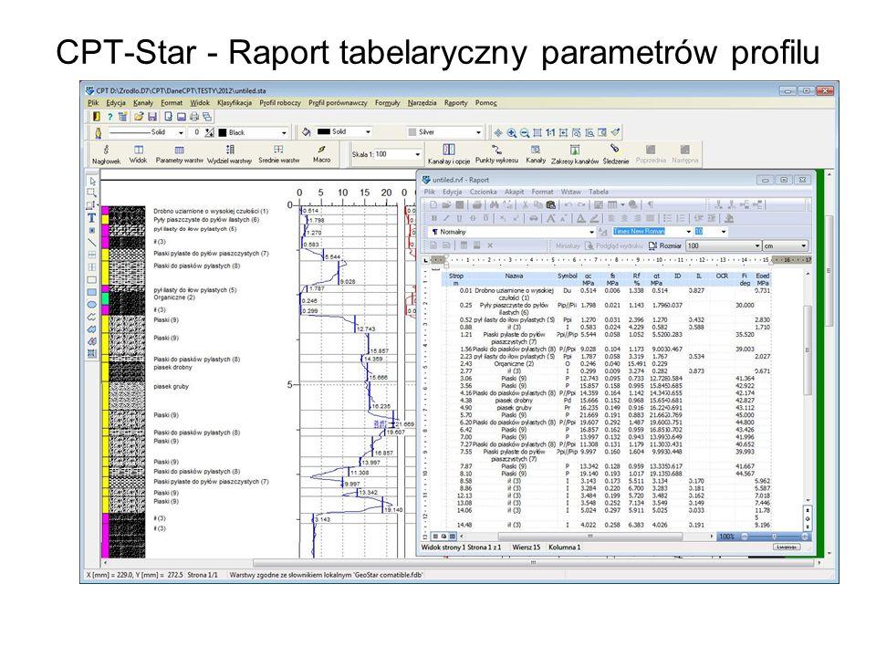 CPT-Star - Raport tabelaryczny parametrów profilu
