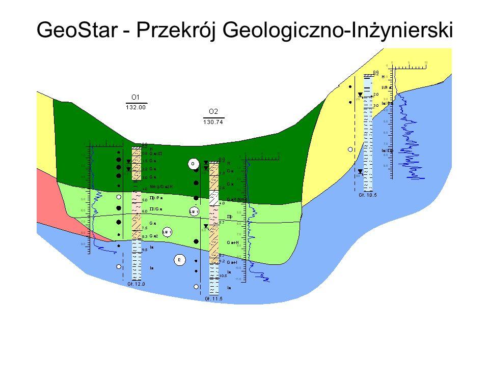GeoPlan Mapy sytuacyjne położenia otworów Nanoszenie wyników badań gruntów na mapę Mapy izoliniowe (np.