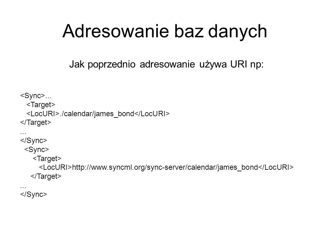 Adresowanie baz danych Jak poprzednio adresowanie używa URI np:..../calendar/james_bond... http://www.syncml.org/sync-server/calendar/james_bond...