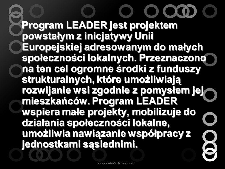 Program LEADER jest projektem powstałym z inicjatywy Unii Europejskiej adresowanym do małych społeczności lokalnych. Przeznaczono na ten cel ogromne ś