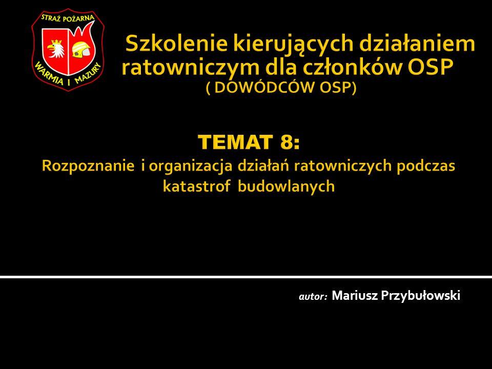 autor: Mariusz Przybułowski