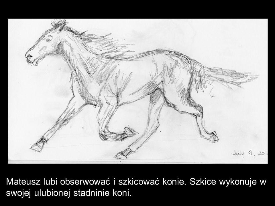 Mateusz lubi obserwować i szkicować konie. Szkice wykonuje w swojej ulubionej stadninie koni.