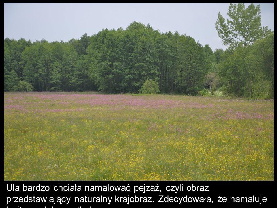 Ula bardzo chciała namalować pejzaż, czyli obraz przedstawiający naturalny krajobraz.