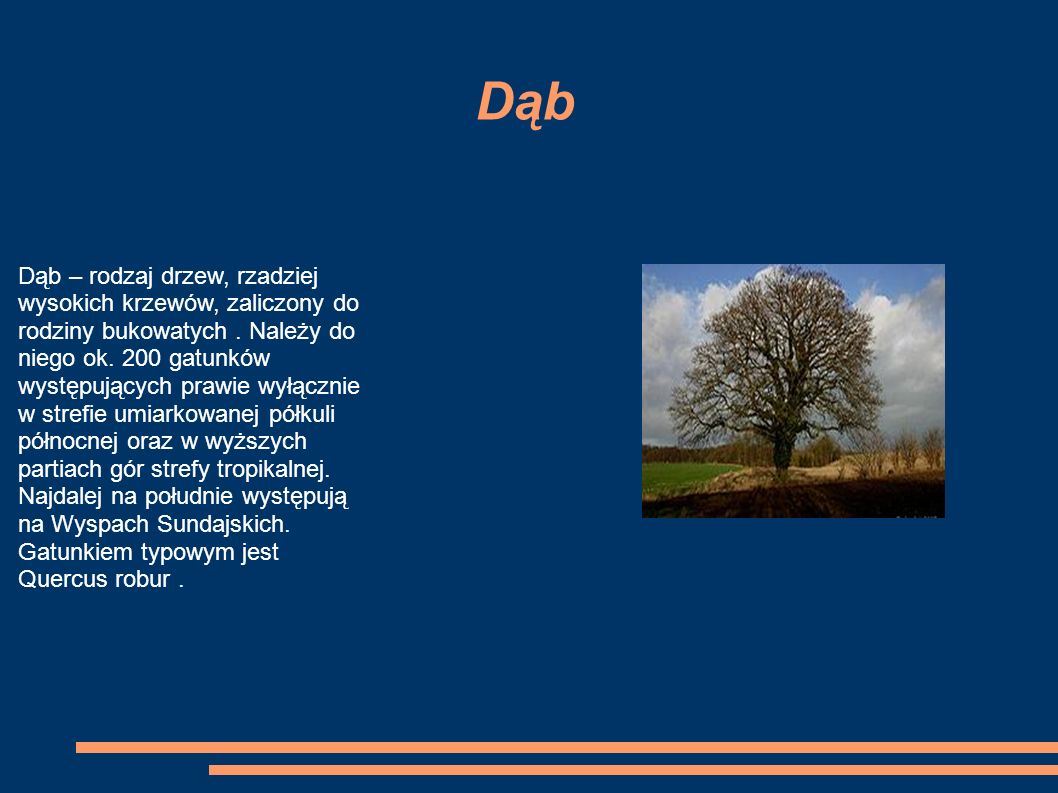 Dąb Dąb – rodzaj drzew, rzadziej wysokich krzewów, zaliczony do rodziny bukowatych.