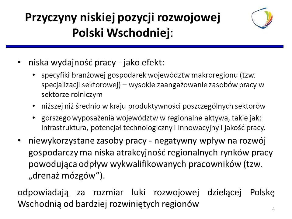 Przyczyny niskiej pozycji rozwojowej Polski Wschodniej: niska wydajność pracy - jako efekt: specyfiki branżowej gospodarek województw makroregionu (tzw.