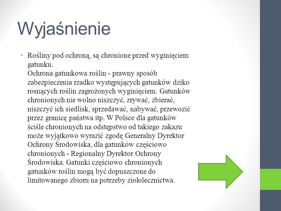 Zawilce Zawilec - rodzaj roślin z rodziny jaskrowatych liczący około 144 – 159 gatunków. Występują one niemal na całym świecie, głównie w strefie klim