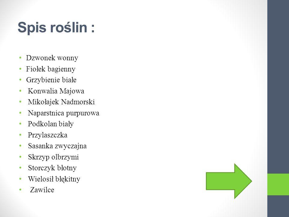 Gatunki roślin chronionych w Polsce