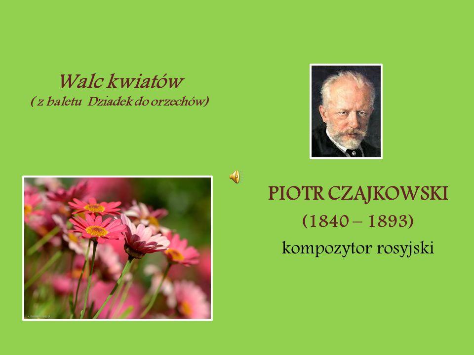 PIOTR CZAJKOWSKI (1840 – 1893) kompozytor rosyjski Walc kwiatów ( z baletu Dziadek do orzechów)