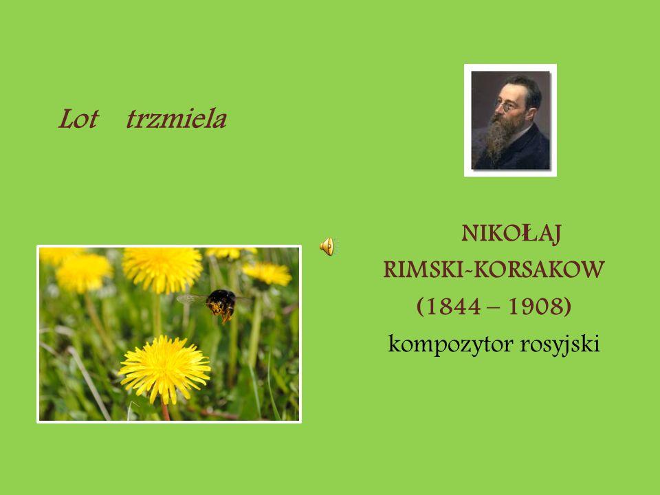 NIKO Ł AJ RIMSKI-KORSAKOW (1844 – 1908) kompozytor rosyjski Lot trzmiela