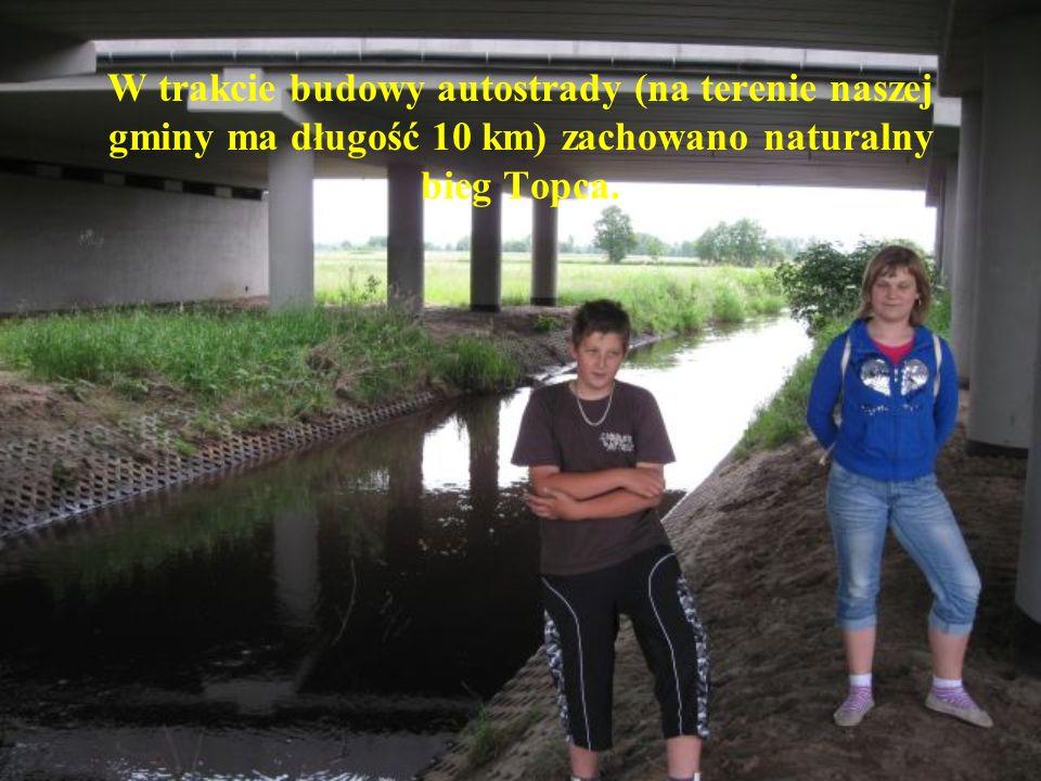 W trakcie budowy autostrady (na terenie naszej gminy ma długość 10 km) zachowano naturalny bieg Topca.