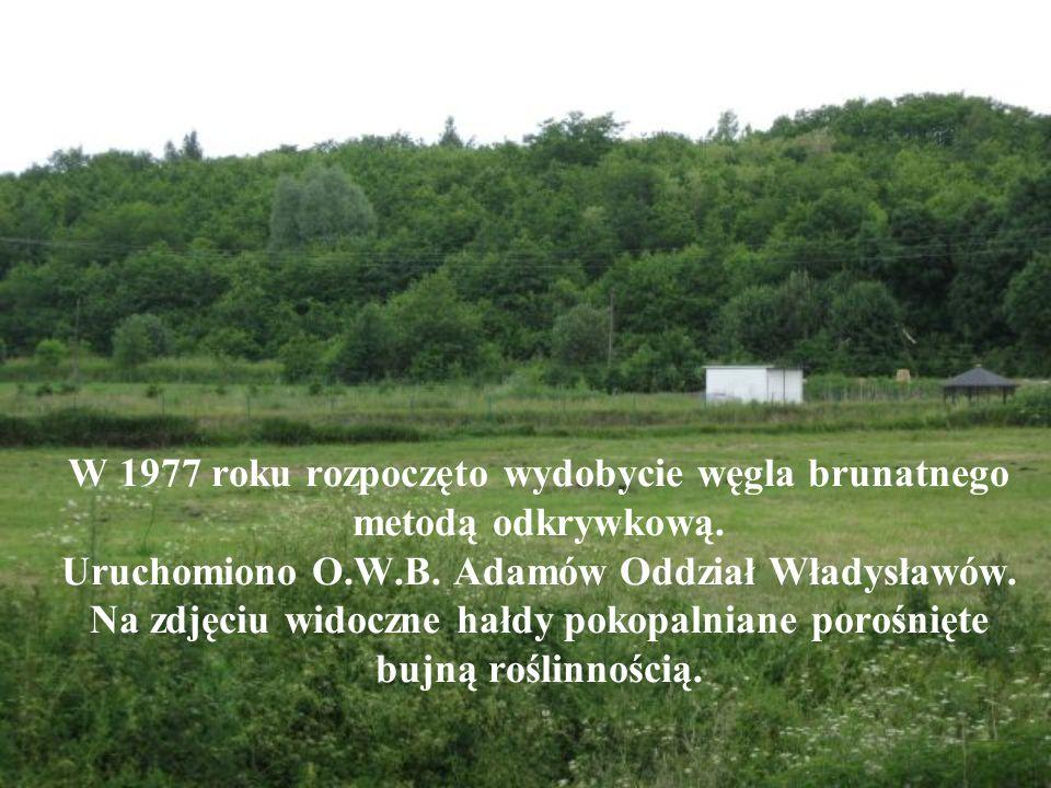 W 1977 roku rozpoczęto wydobycie węgla brunatnego metodą odkrywkową.