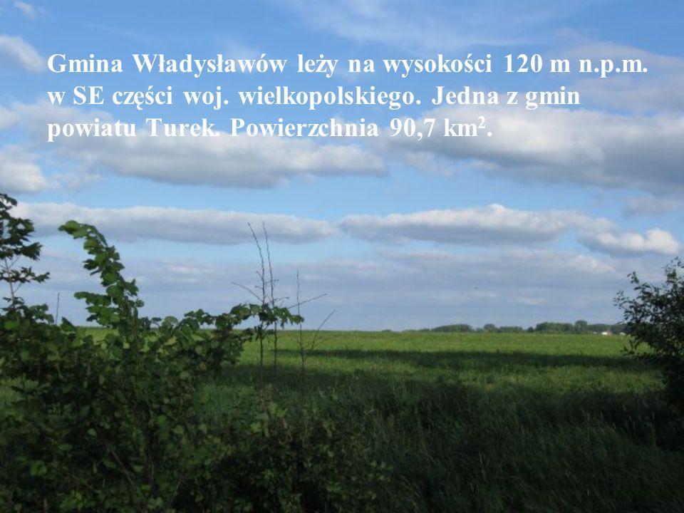 Gmina Władysławów leży na wysokości 120 m n.p.m. w SE części woj.