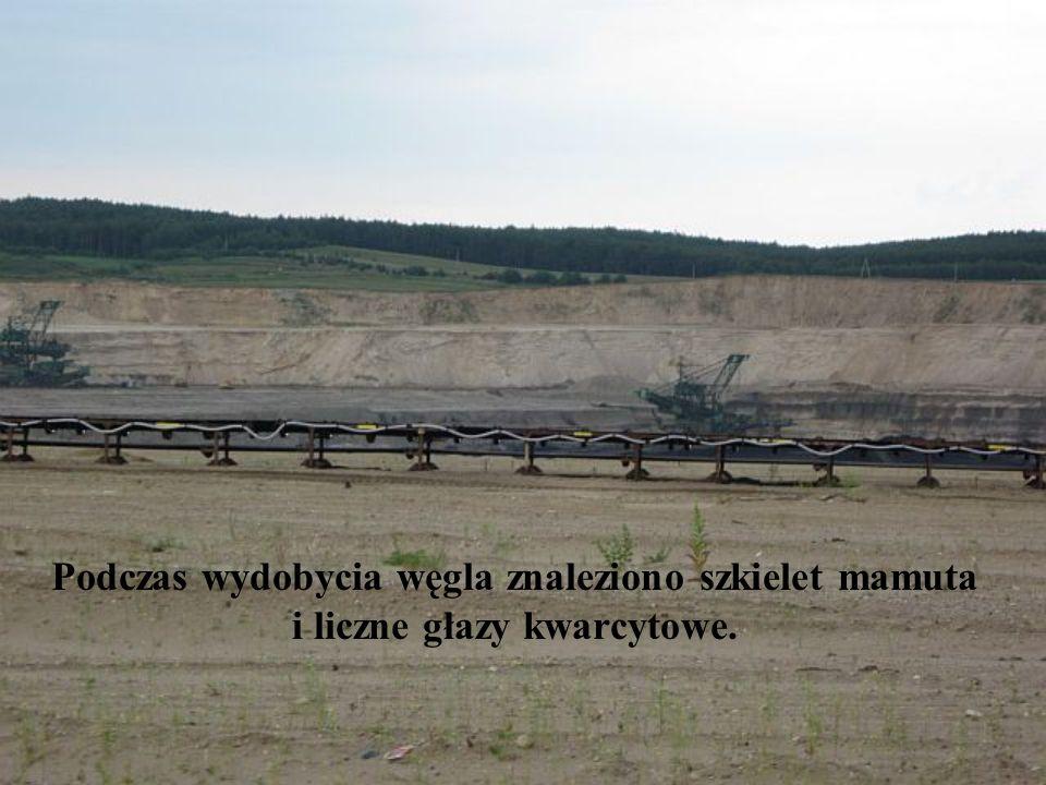 Podczas wydobycia węgla znaleziono szkielet mamuta i liczne głazy kwarcytowe.