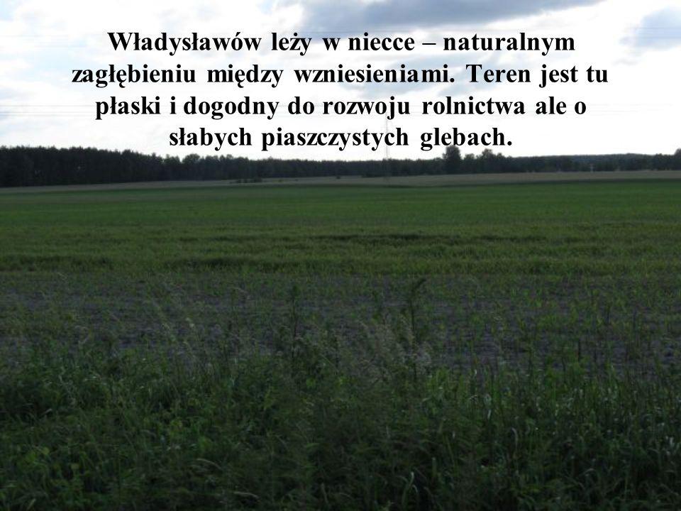 Władysławów leży w niecce – naturalnym zagłębieniu między wzniesieniami.