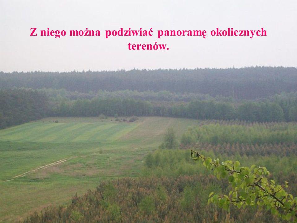 Z niego można podziwiać panoramę okolicznych terenów.