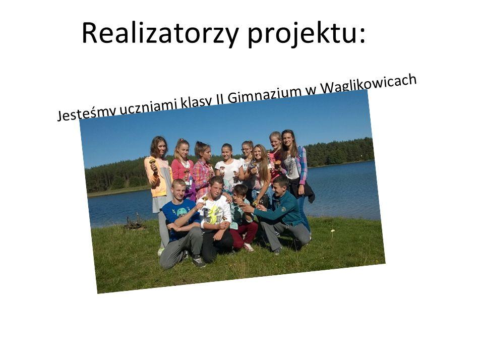 Realizatorzy projektu: Jesteśmy uczniami klasy II Gimnazjum w Wąglikowicach Mieszkamy w pięknej okolicy – sprzyjającej rekreacji i uprawianiu sportów różnego rodzaju.
